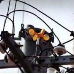 写真-2 風車式鳥害防止器